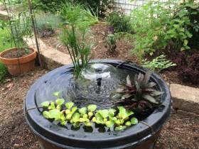 Water Garden JBP Landscape Contractors