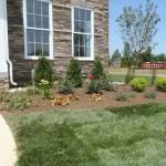 flowers | JBP Landscape Contractors