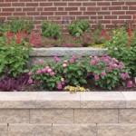 Maintenance | JBP Landscape Contractors