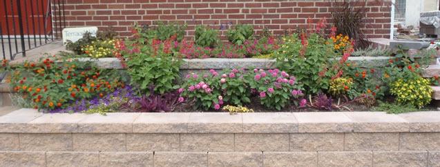 Floral Maintenance | JBP Landscape Contractors