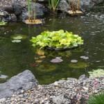 water feature | JBP Landscape Contractors